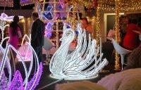 Labuť (LED, kov, peří) - 150*150 cm