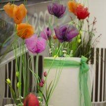 Líhnutí jara (7)
